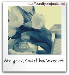 are-you-a-smart-housekeeper