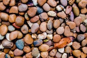 garden_stone_path_image1